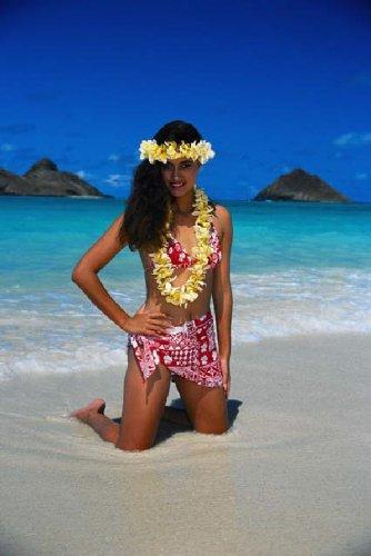 Destination Maui - A Travel and Tourism Guide to the Hawaiian Island of Maui