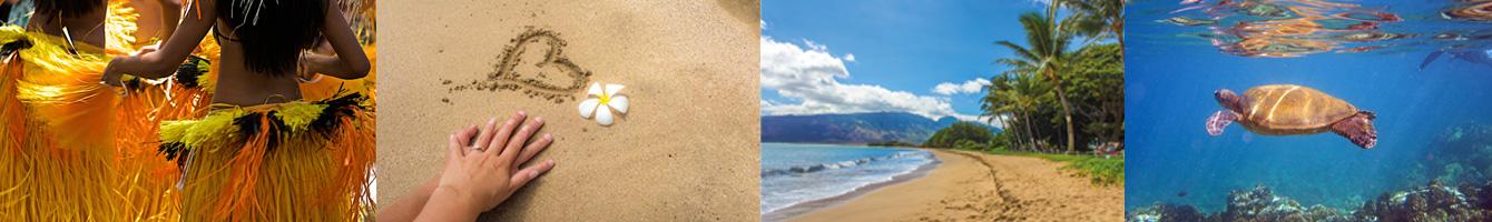 Maui Travel Adviser